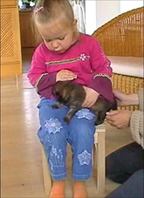 child with Eurasier puppy, ZG
